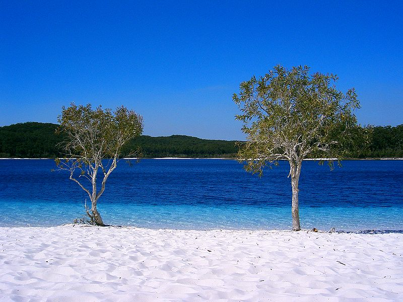 Queensland - Great Sandy NP - Fraser Island